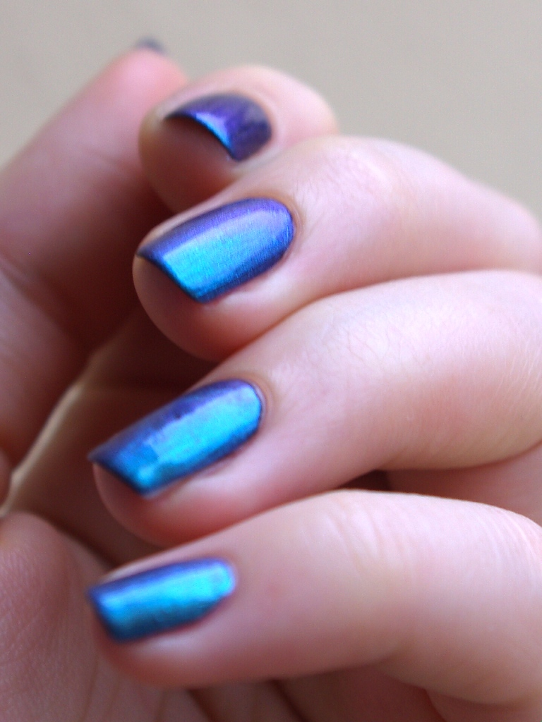 Bulleuw:Blue Turquoise 6