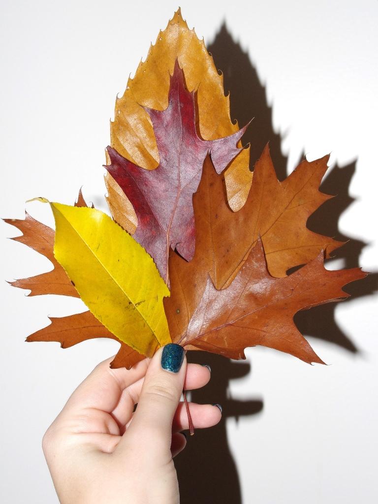 Bulleuw : Autumn Part III 0