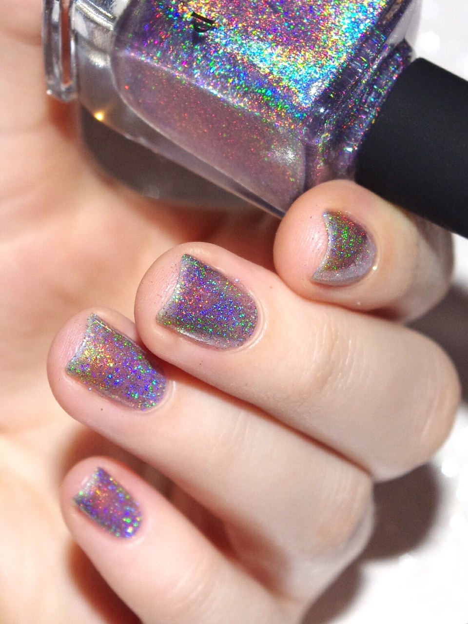 Bulleuw : ILNP Winter 2015 11