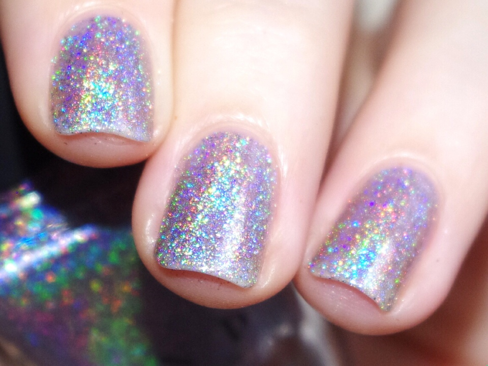 Bulleuw : ILNP Winter 2015 15