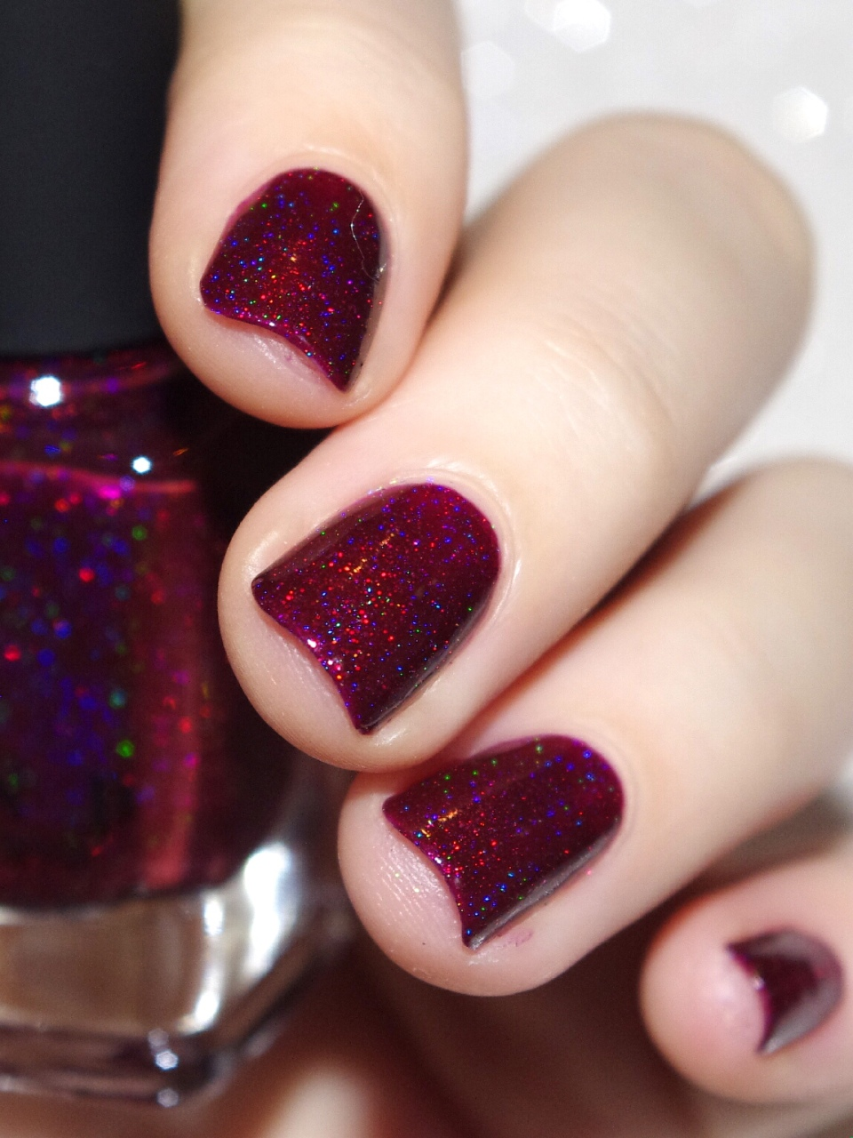 Bulleuw : ILNP Winter 2015 17