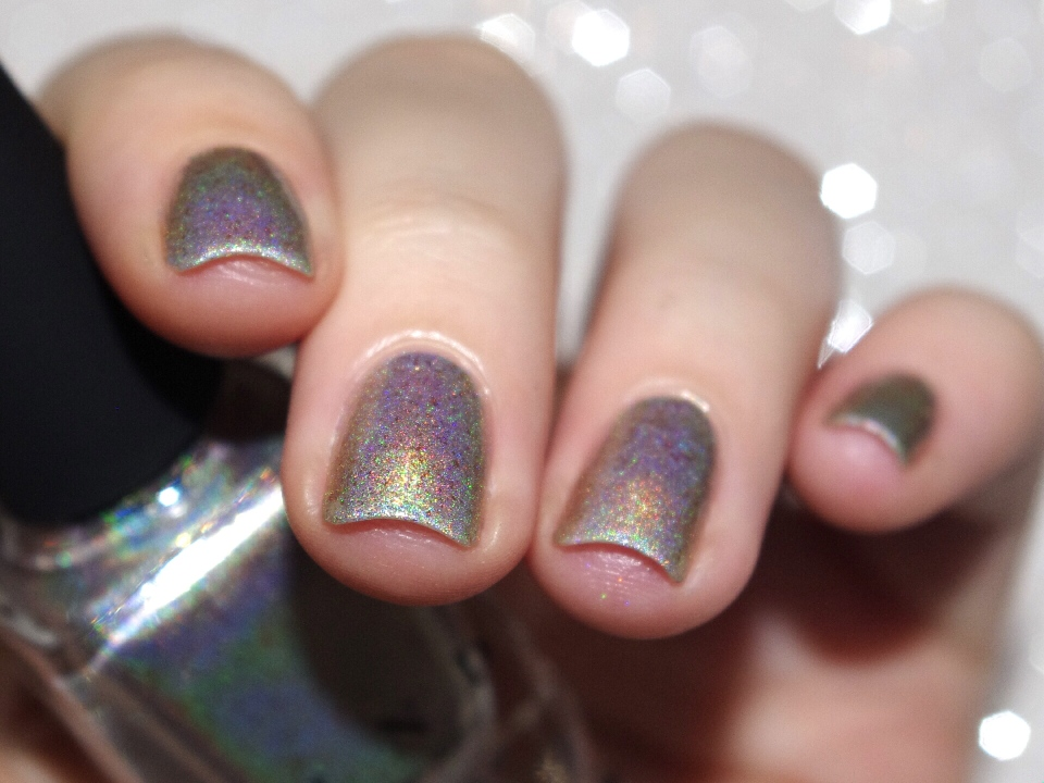 Bulleuw : ILNP Winter 2015 3