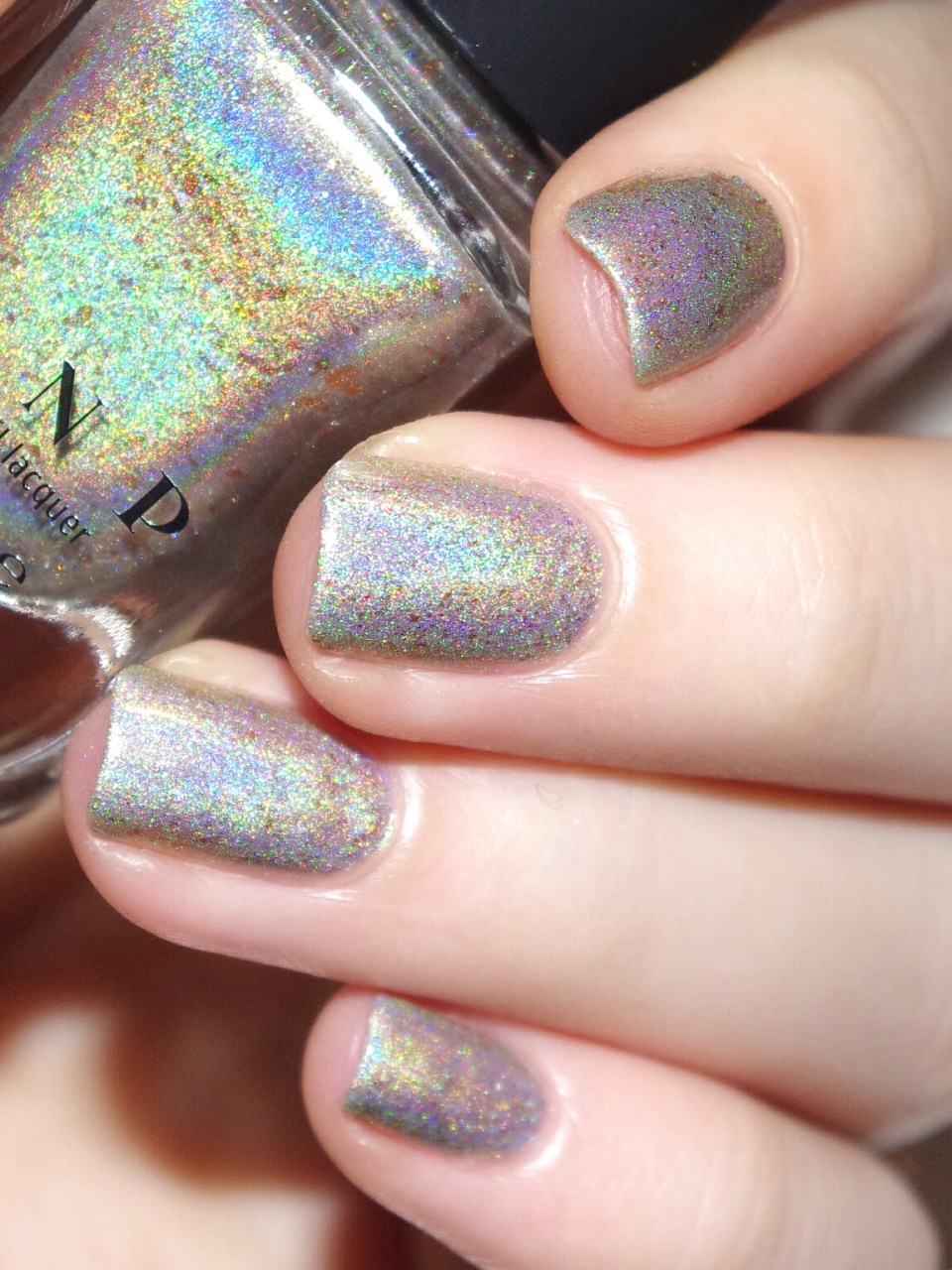 Bulleuw : ILNP Winter 2015 4