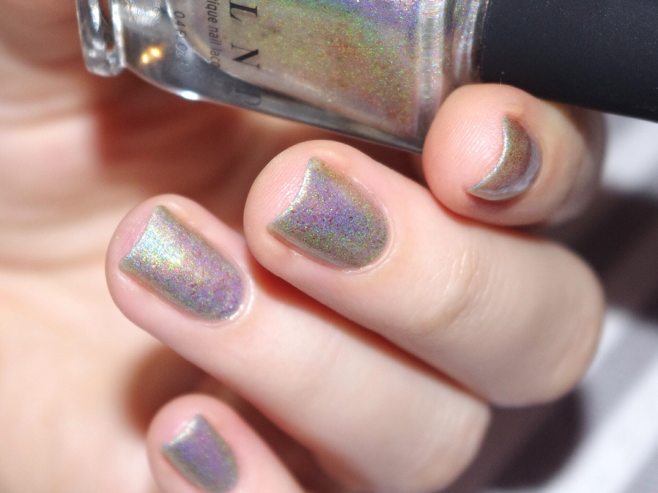 Bulleuw : ILNP Winter 2015 8