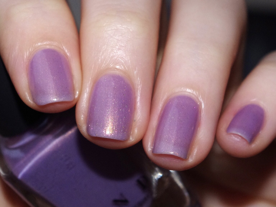 Bulleuw : ILNP Shimmer 31