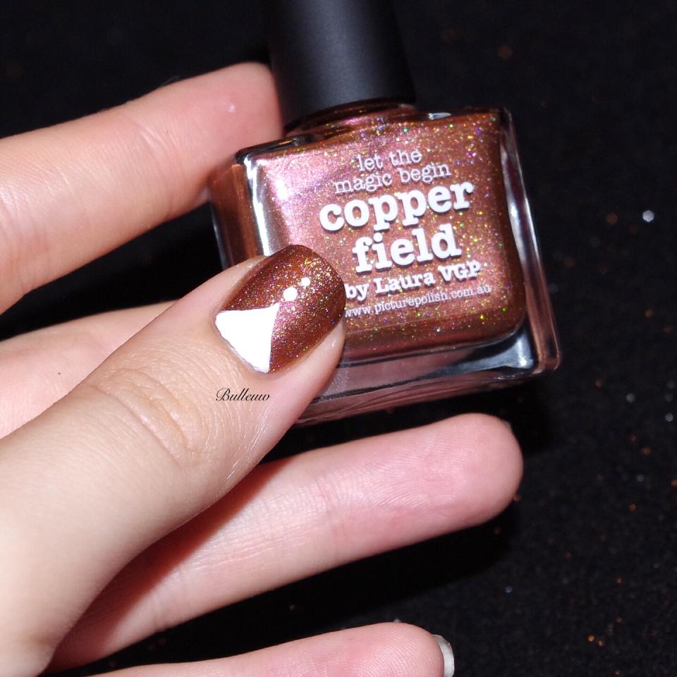 bulleuw-copper-field-14